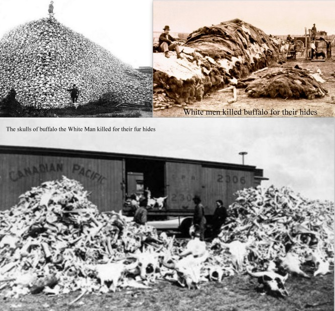 letourvoicesecho-standingrock-indianholocaust-nodapl