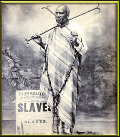 Slave 23