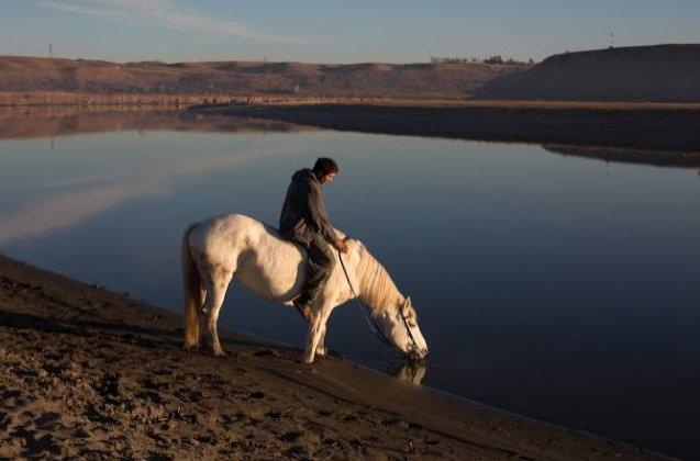 letourvoicesecho-warriorhorse-indianholocaust-standingrock