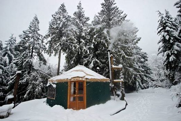 standingrock-policeviolence-letourvoicesecho-cabin