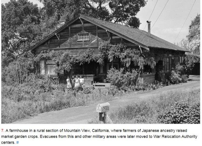 #LetOurVoicesEcho #JapaneseRelocationCampEvacuees #Farm